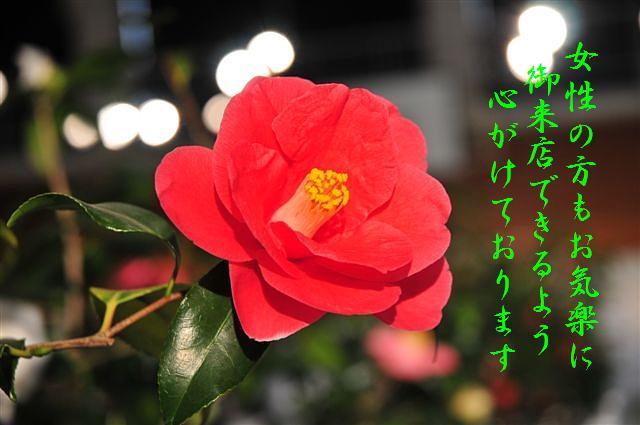 紅OPEN (3)