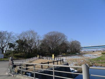 nikotama1202.jpg