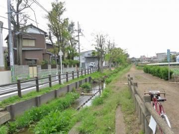 senkawajyousui1.jpg
