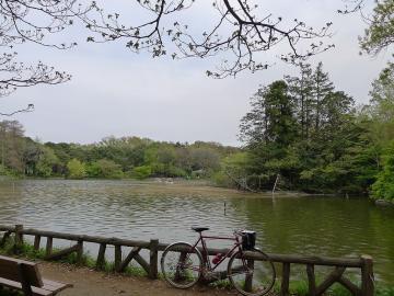 zenpukujipark.jpg