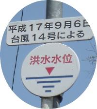14-8_20130420221821.jpg
