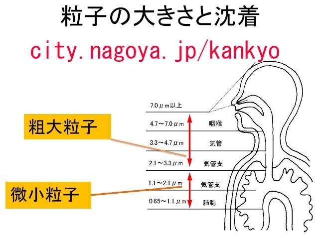 image_20130214230343.jpg