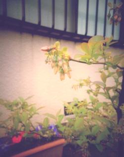 2012_05_02_04.jpg