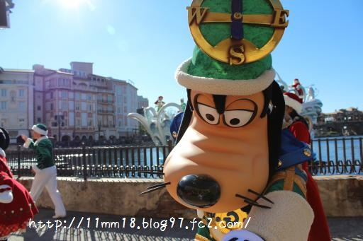 IMG_2228_convert_20121114085153.jpg