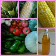20120908 お野菜