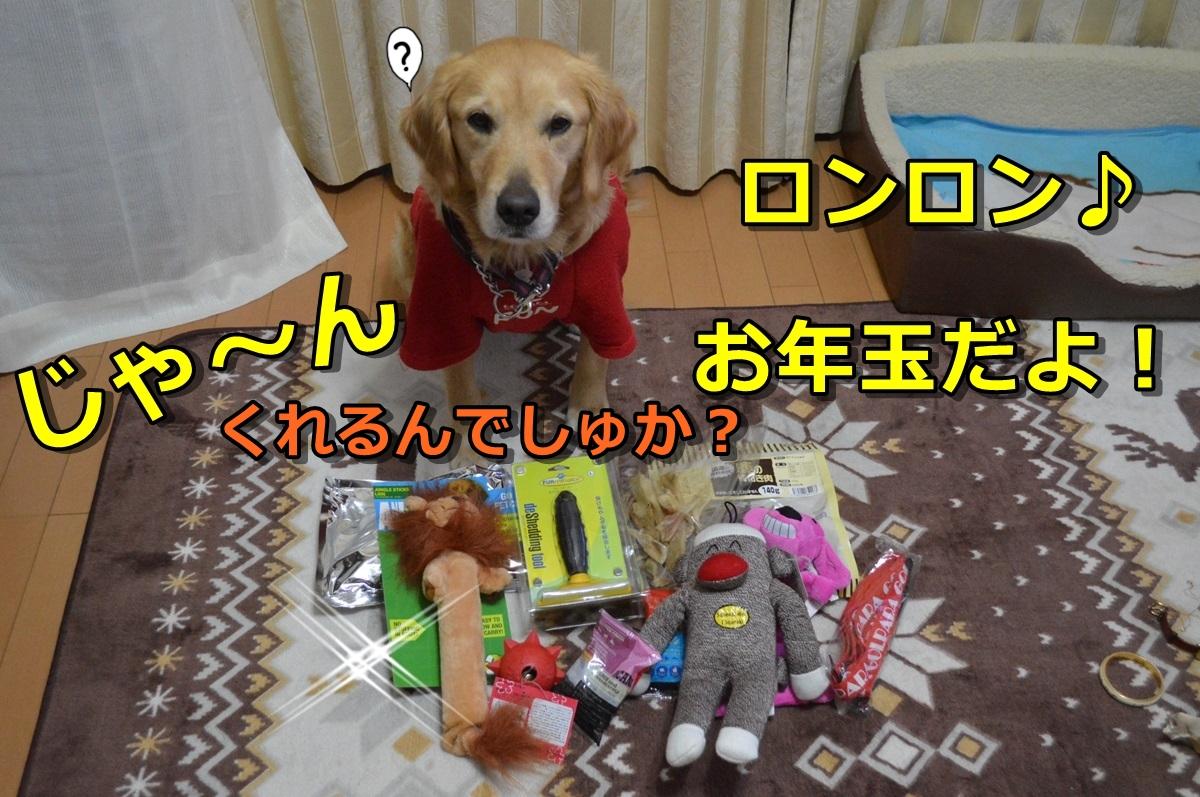 1_20140105231327325.jpg