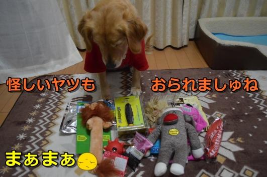 3_20140105231324774.jpg