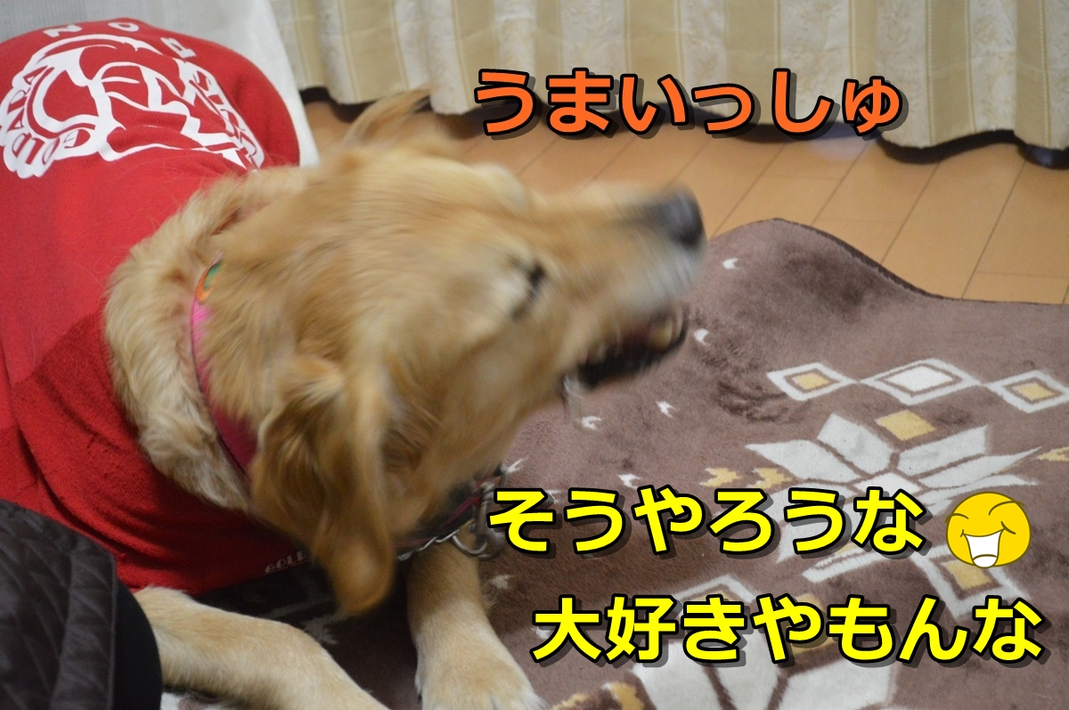 7_201401052314411c1.jpg