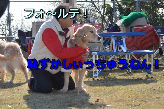 DSC_0589-046.jpg