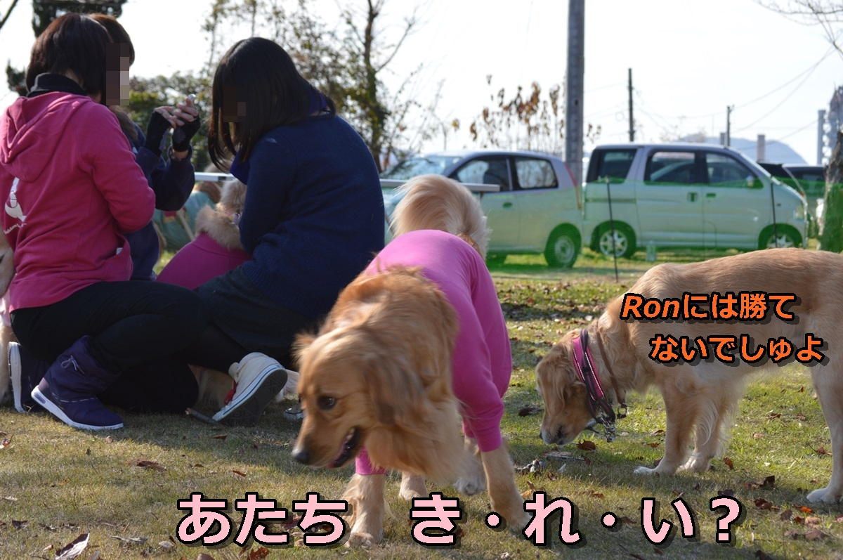 DSC_0599-056.jpg