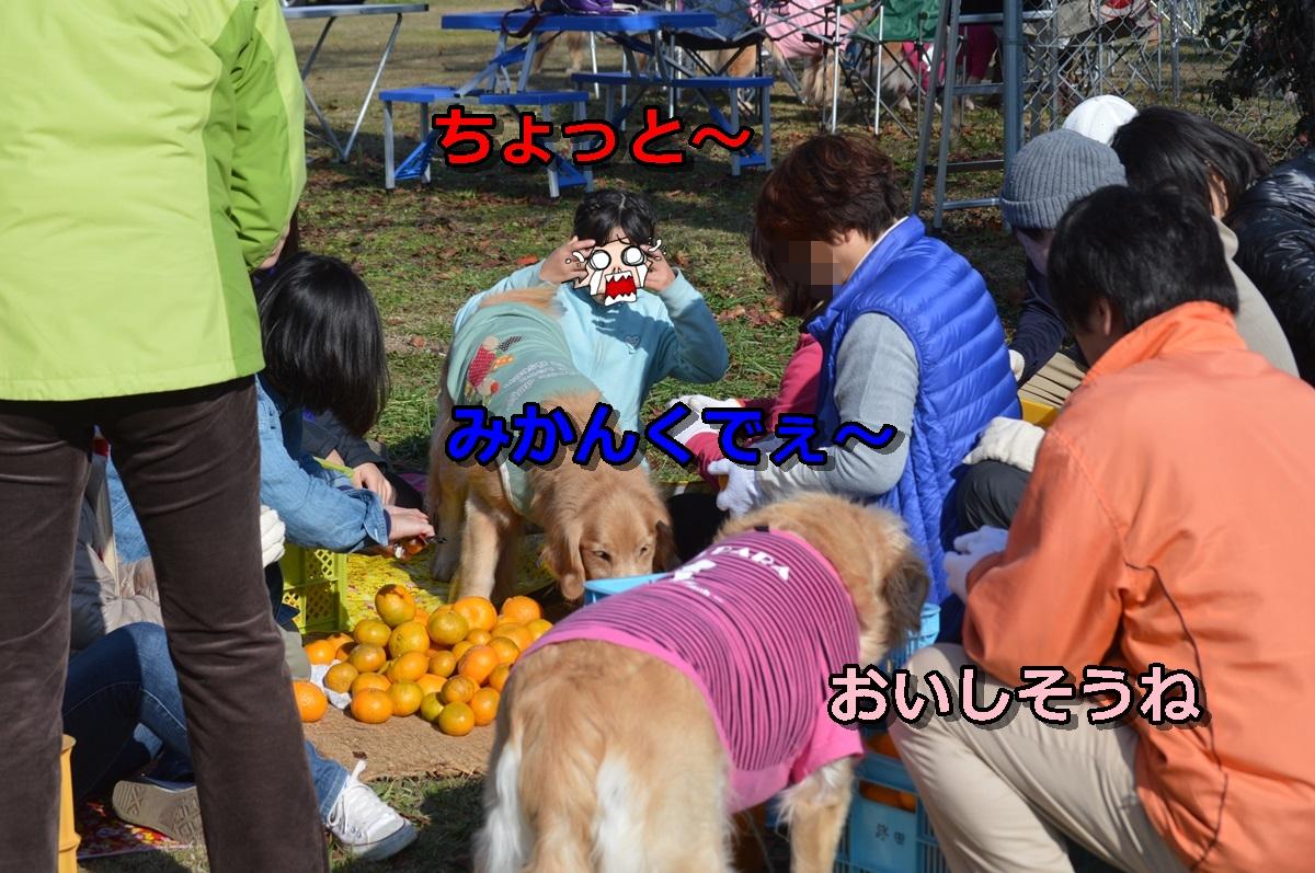 DSC_0634-091.jpg