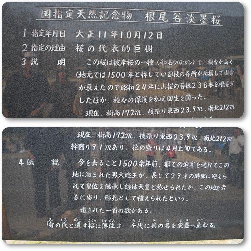 120421-1.jpg