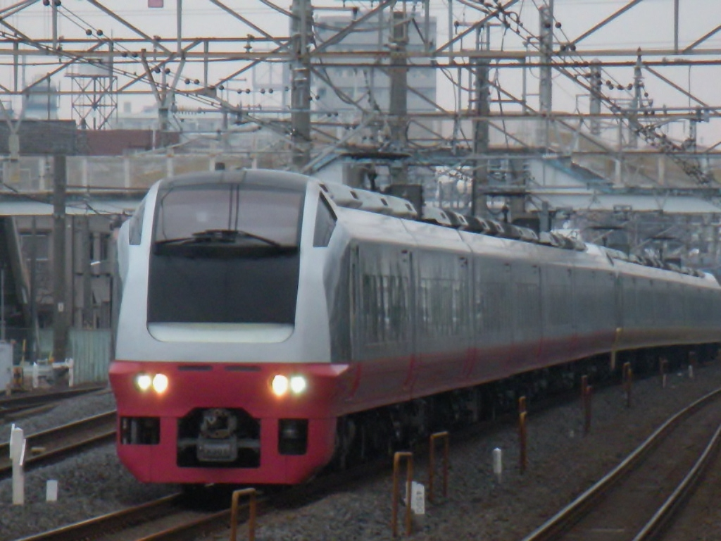 DSCN3384.jpg