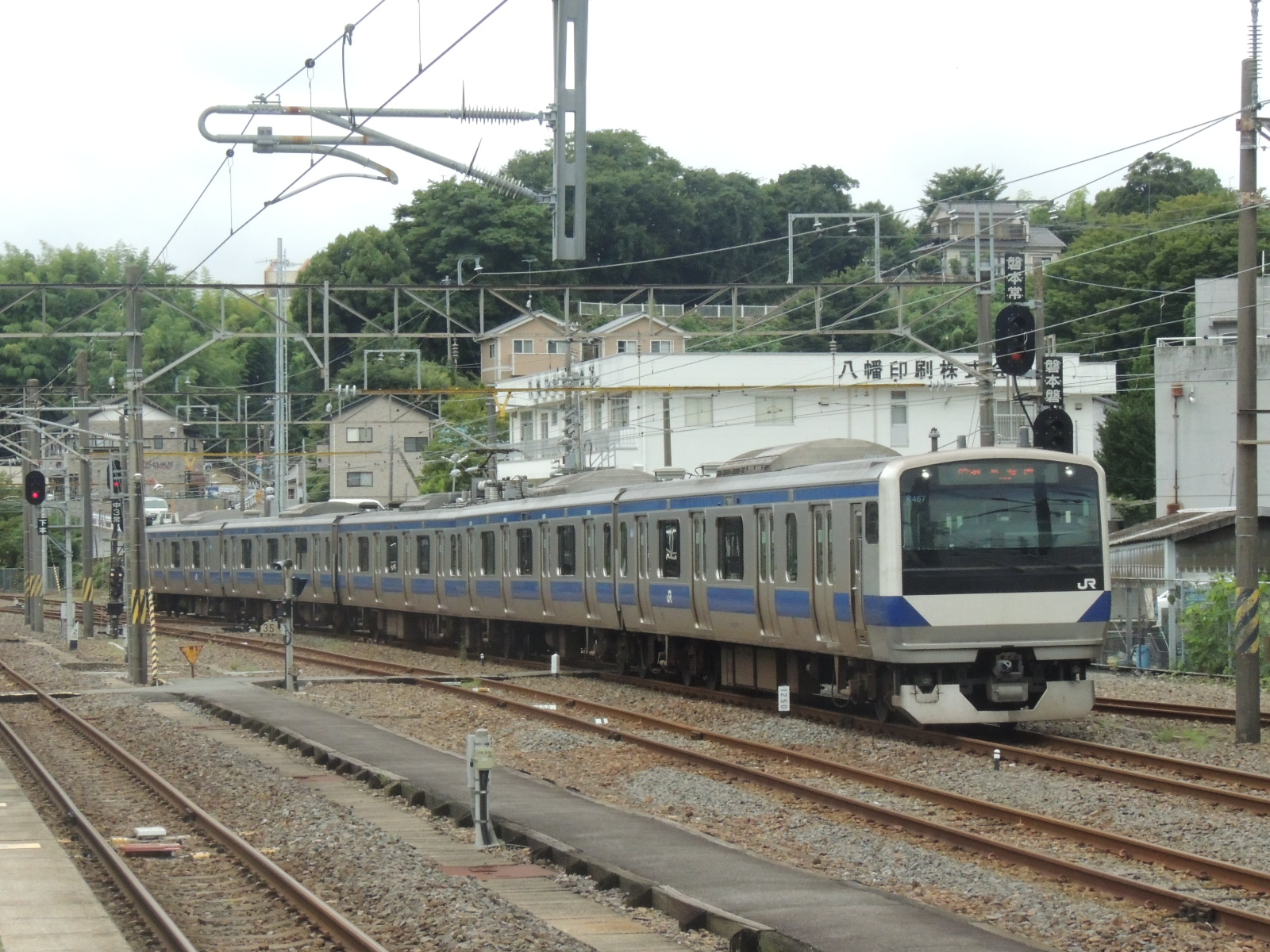 DSCN3503.jpg