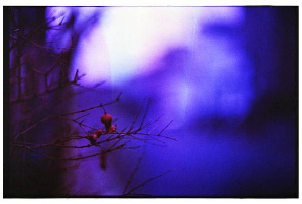 20120824_n_2.jpg