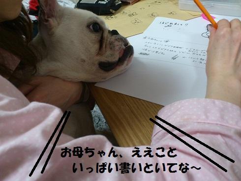 DSC_1726.jpg