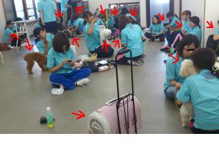 snap_315chocky_20129012418.jpg