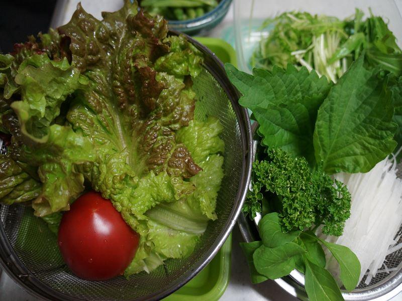 自家製サラダ菜
