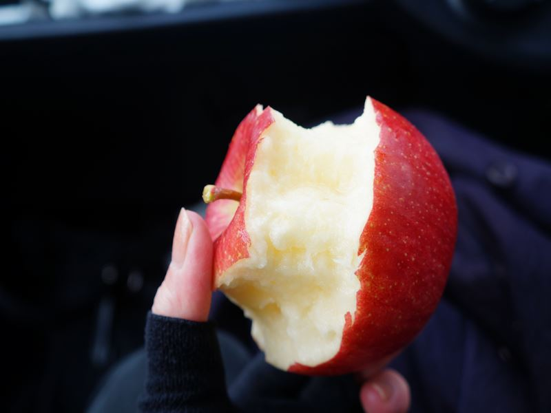 リンゴの丸かじり