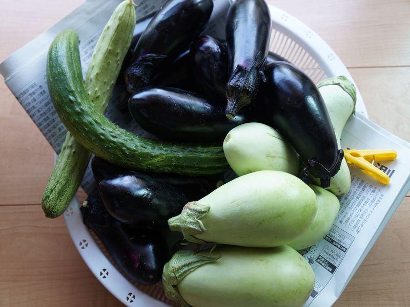 野菜それぞれ