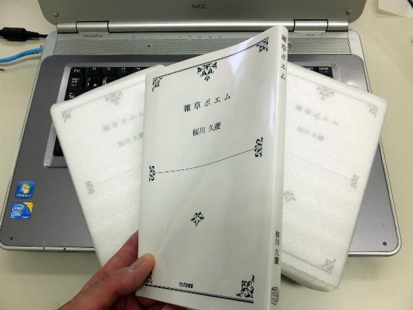 DSCF0300_copy.jpg