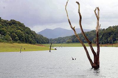 ペリヤール動物自然保護区