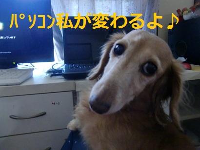 CIMG5670.jpg