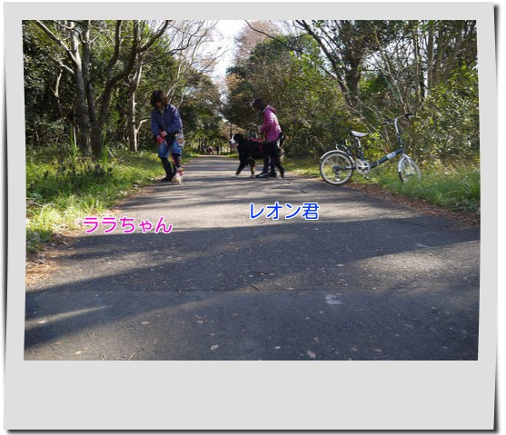 nm4VuBwJ1D0VpFo1356002993_1356003277.jpg