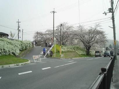 50PIC_0041.JPG