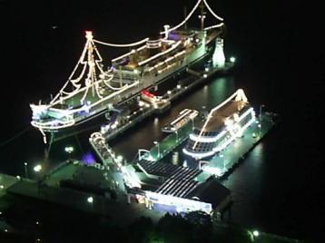 50 夜 氷川丸.JPG