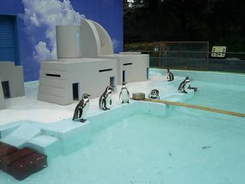 ペンギン舎2.jpg