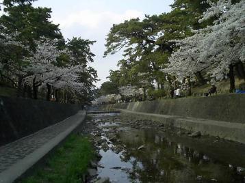 夙川公園03.JPG