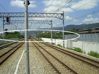 駅から夙川公園.JPG