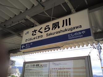33 さくら夙川.JPG