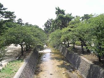 33 夙川公園2.JPG