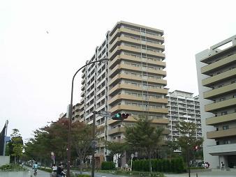 海辺NT (4).JPG