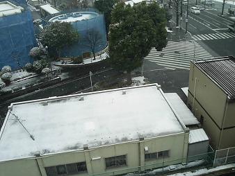 雪ふってまーす.JPG