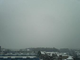雪ふってまーす1.JPG