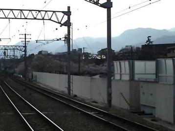 さくら夙川駅から拡大.JPG