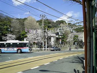 江ノ島路面← (3).JPG