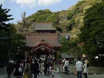 八幡さま (2).JPG