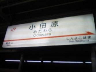 小田原駅(幹).jpg