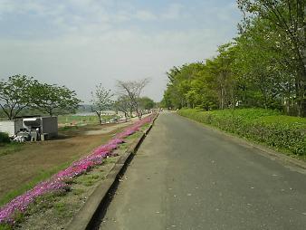 33 PIC_0035.JPG