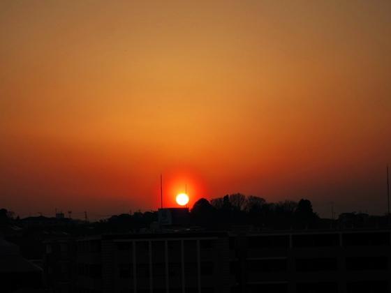 3月の夕焼け045