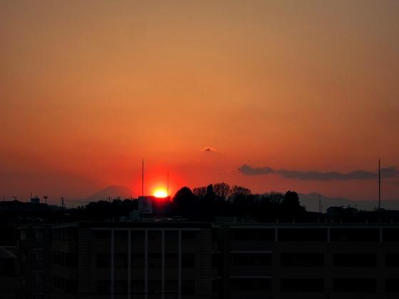 3月の空と花と夕焼け02