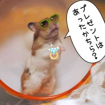 ちよサンタ3