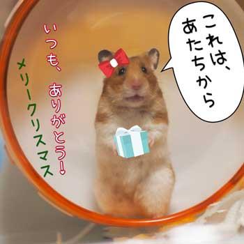 ちよサンタ4