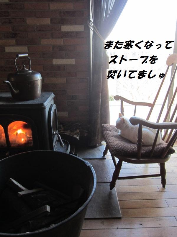 IMG_8042.jpg