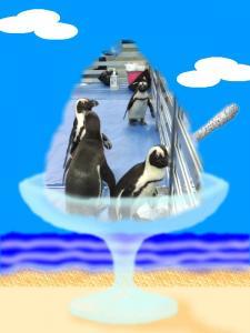 ペット王国_ペンギン