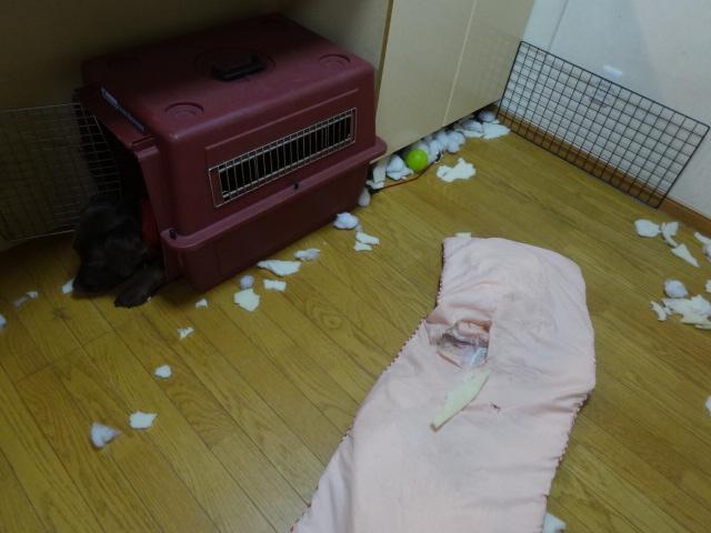 寝床 021